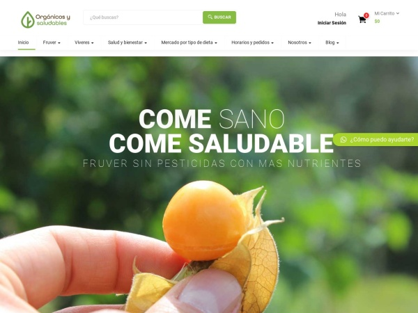 Captura de pantalla de organicosysaludables.com