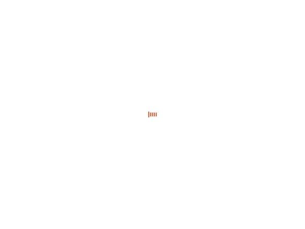 Screenshot of pensiuneaarena.ro