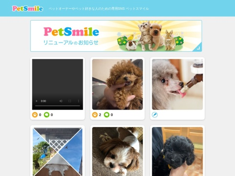 https://pet-smile.net/