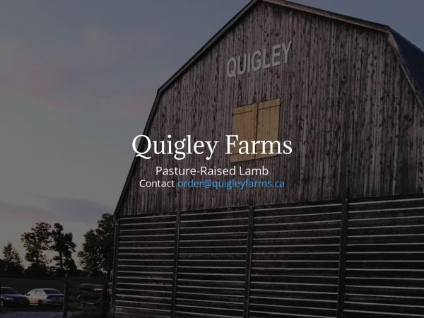 Screenshot of quigleyfarms.ca