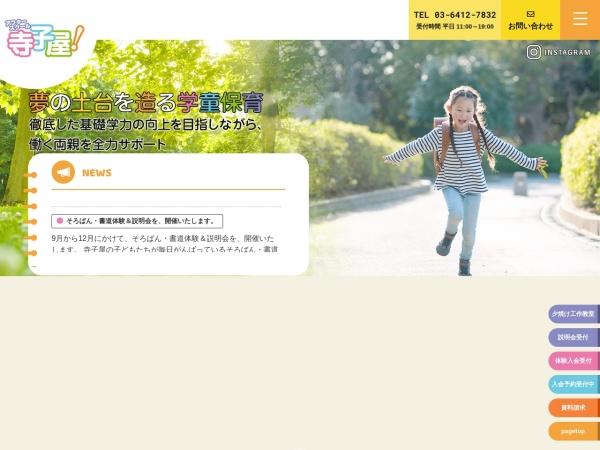 Screenshot of schoolterakoya.tokyo