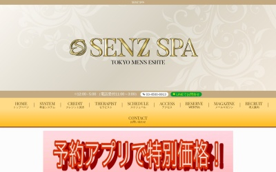 Screenshot of senzspa.com
