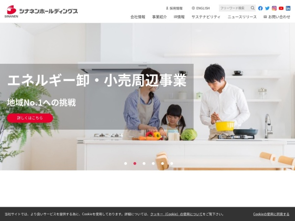 Screenshot of sinanengroup.co.jp