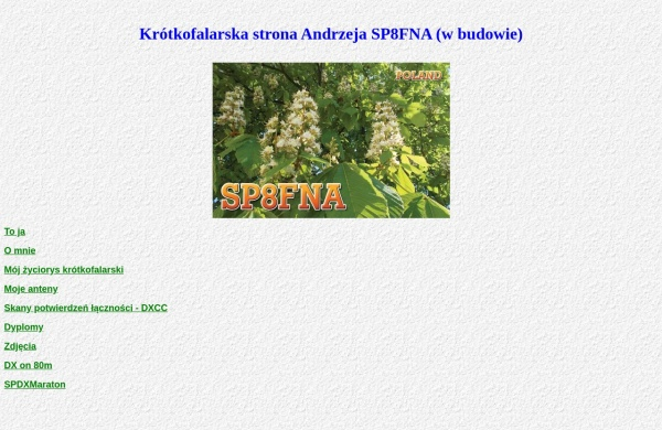 Screenshot of sp8fna.pzk.pl