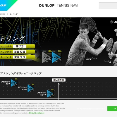 Screenshot of sports.dunlop.co.jp