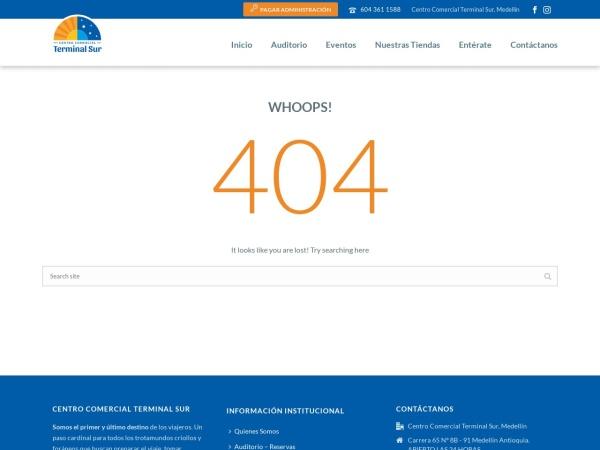 Captura de pantalla de terminaldelsur.com