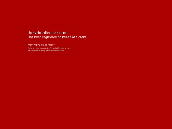 Screenshot of thesekcollective.com