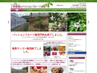 奄美大島の上野農園