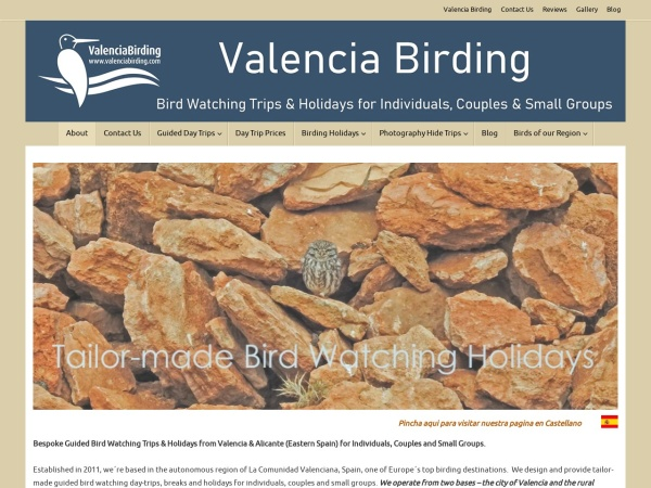 Bird watching in Valencia and Alicante