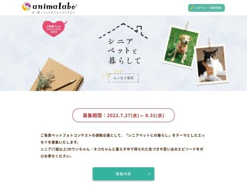 Screenshot of www.animalabo.com