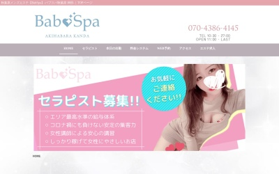 Screenshot of www.babspa.com