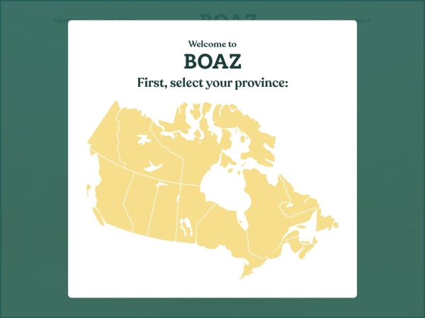 Screenshot of www.boazpharm.com