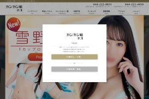 Screenshot of www.cancanmusumeneo-kawasaki.com