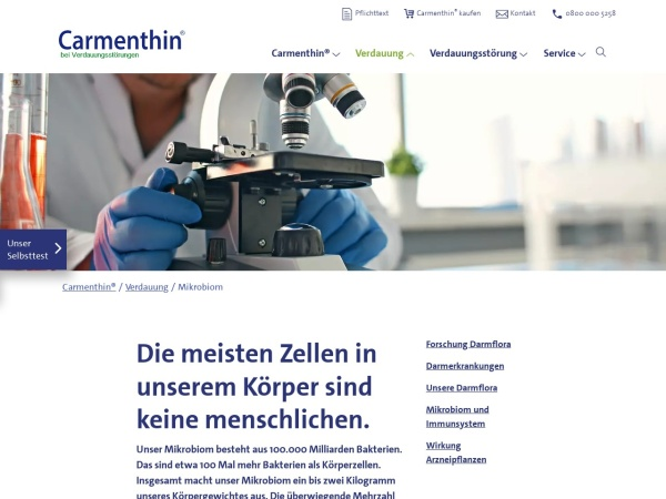 Screenshot von www.carmenthin.de