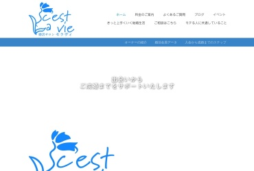 Screenshot of www.cestlavie.wedding