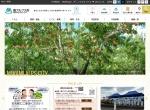 Screenshot of www.city.minami-alps.yamanashi.jp