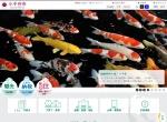 Screenshot of www.city.ojiya.niigata.jp