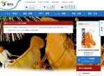 Screenshot of www.city.yokote.lg.jp