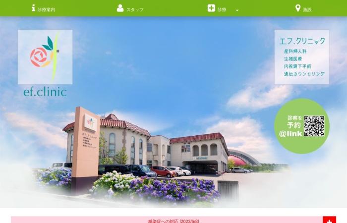 Screenshot of www.efclinic.com