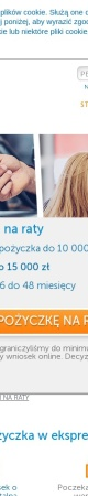 Screenshot of www.ekspreskasa.pl
