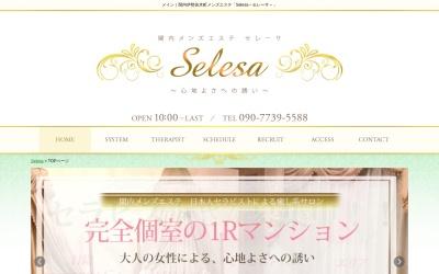 Screenshot of www.esthe-selesa.com