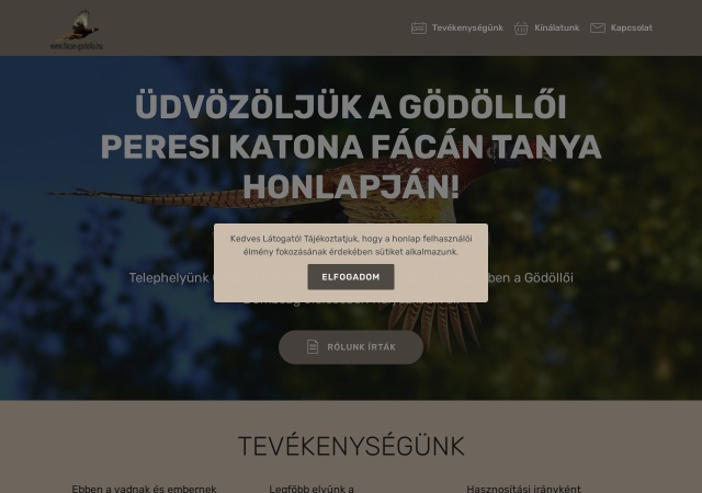 Screenshot of www.facan-godollo.hu