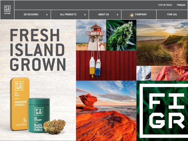 Screenshot of www.figr.com
