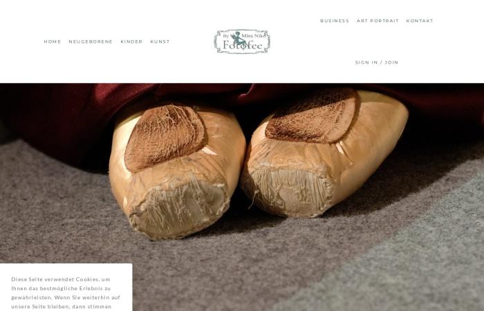 Screenshot of www.fotofee.at