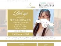 Screenshot of www.gotanda-mensesthe.jp