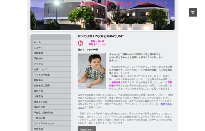 Screenshot of www.hirabarikita-clinic.com