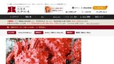Screenshot of www.hokusen.co.jp