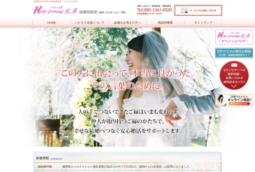 Screenshot of www.hp-ns.net