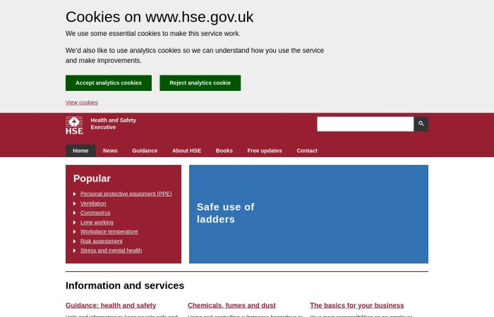 Screenshot of www.hse.gov.uk