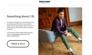 Indochinoウェブサイトサムネイル