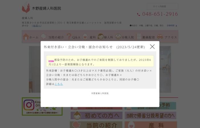 Screenshot of www.kinomaternityclinic.jp