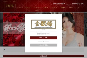 Screenshot of www.kinpeibai-kawasaki.com