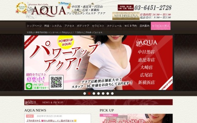 Screenshot of www.nakameguro-aqua.com