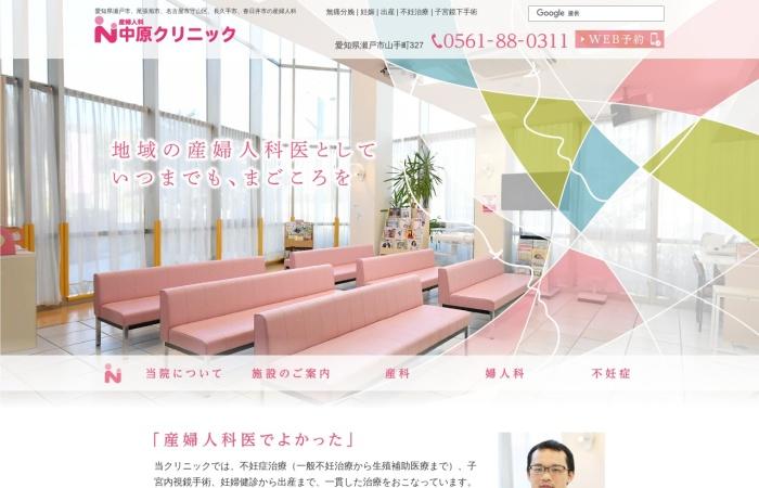 Screenshot of www.nakanic.com