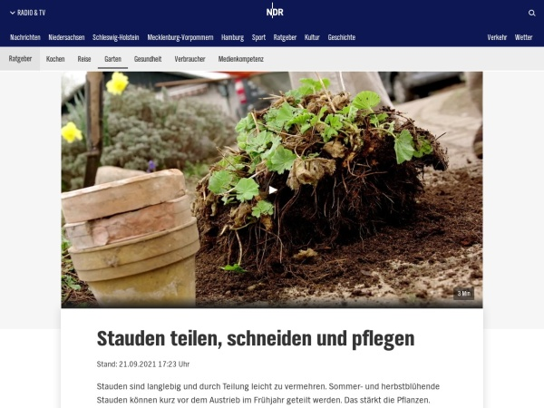 Screenshot von www.ndr.de