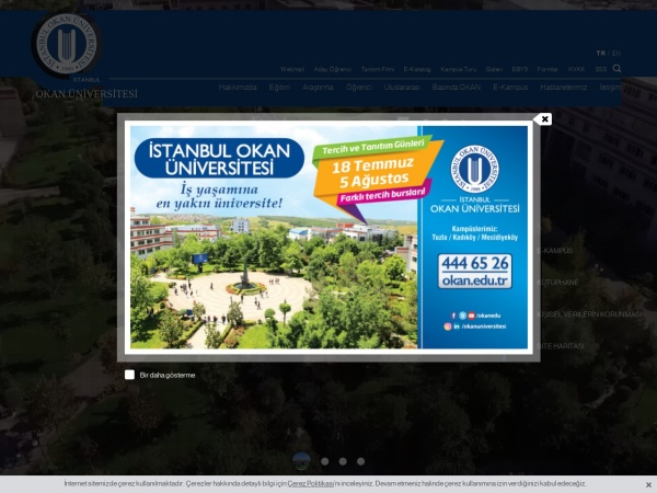 Screenshot of www.okan.edu.tr