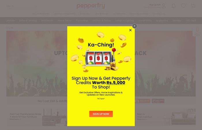 Screenshot of www.pepperfry.com