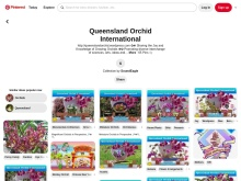 Queensland Orchid International on Pinterest
