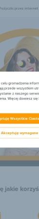 Screenshot of www.pozyczkaplus.pl