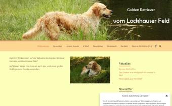 Golden Retriever von Lockhauser Feld