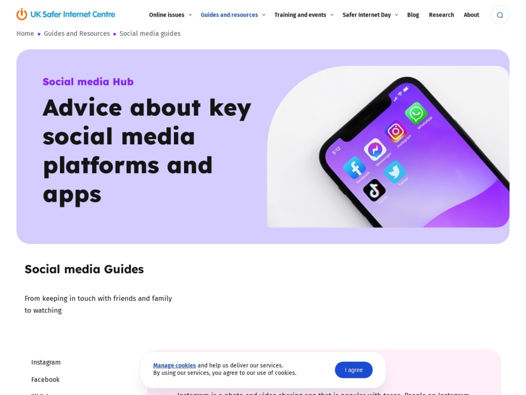 Screenshot of www.saferinternet.org.uk