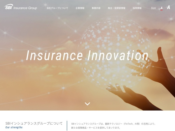 Screenshot of www.sbiig.co.jp