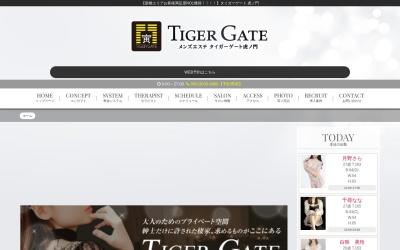 Screenshot of www.tiger-gate.net