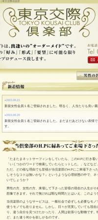 Screenshot of www.tokyo-kousai.com