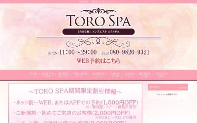 Screenshot of www.torospa.com