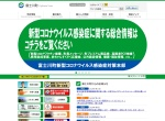 Screenshot of www.town.fujikawa.yamanashi.jp